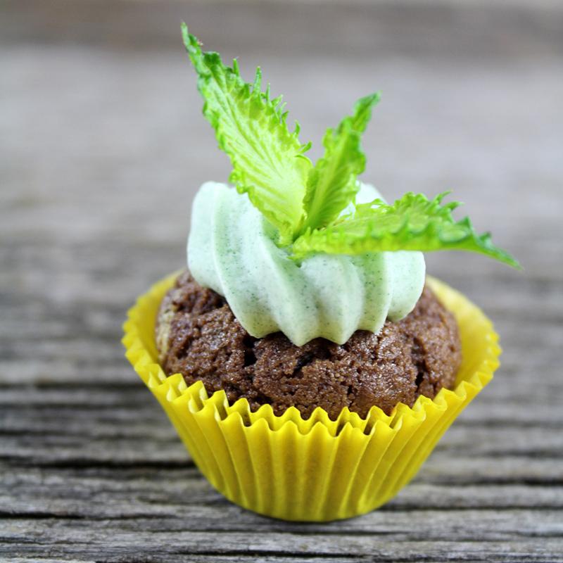 Cupcake menthe chocolat dans caissette jaune sur fond de bois gris