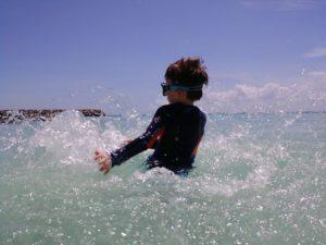 Instant de vie dans la mer en Guadeloupe