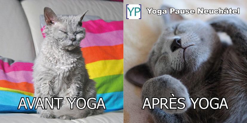 Dès janvier, viens défroisser ton corps avec du yoga doux