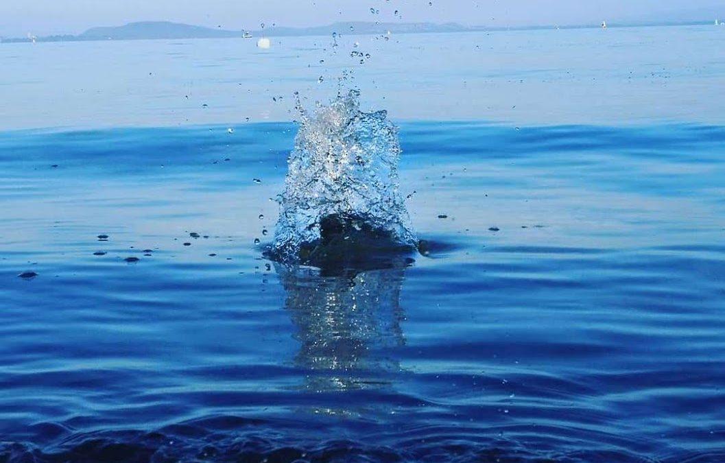 Les ronds dans l'eau